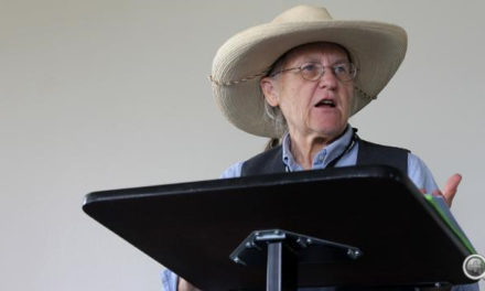 The Chautauqua Festival – a week of notable history and dramatic storytelling – began in Norfolk Wednesday, and this year, some of the area's youngest storytellers will be charged with conjuring up the past.