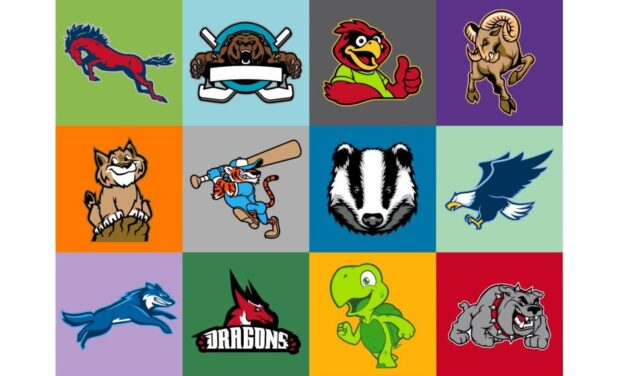 Civil Rights and the Impact of Native American Names, Symbols, and Imagery  in School Mascots